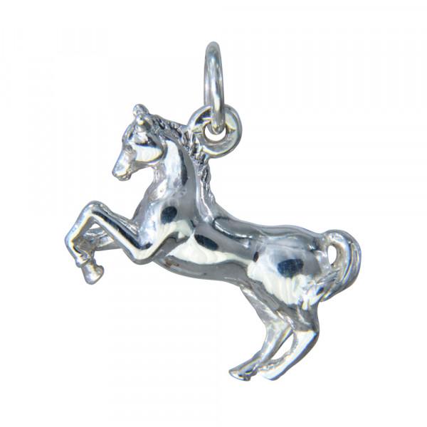 AH steigendes Pferd